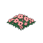 Decoration flowerbed pink thumbnail@4x