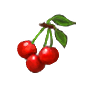 File:Cherries-icon.png