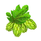 File:Hops-icon.png