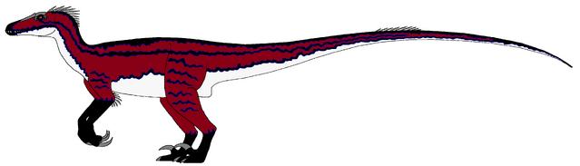 File:Raptor (2017).png