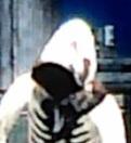 Hooded draco