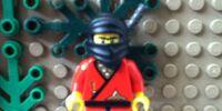 Shadow (Ninja)