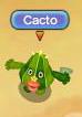 Cacto