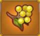 Rejuvenating Berries