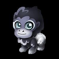 Silverback Gorilla Baby