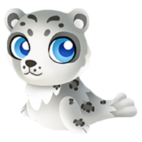 Snow Leopard Seal Baby