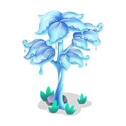 Canopy Tree