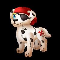 Salty Dog Juvenile