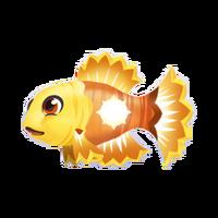 Sunfish Juvenile
