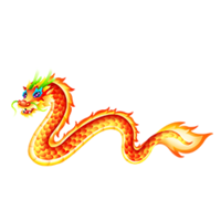 Paper Lantern Dragon Adult