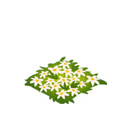 File:Lightning Lillies.png