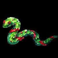 Garland Snake Adult