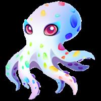 Opal Octopus Juvenile