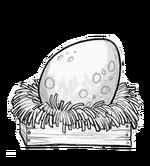 Normal porkin egg