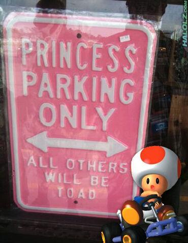 File:Princess-parking-only.jpg