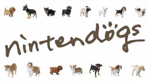 Surprise Record - Nintendogs-2