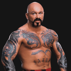 Perry Saturn pro