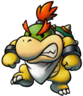 M&L Baby bowser