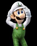 Fire Luigi SSBD