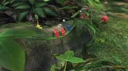 Pikmin Jungle