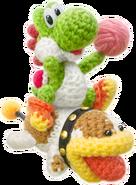 Yarn Yoshi and Poochy YWW