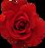 Rosepose