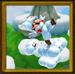 The Cloud Path