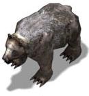 File:BearDS.png