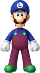 Luigi NSMBDIY