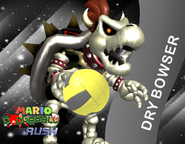 Dry Bowser Wall MDR