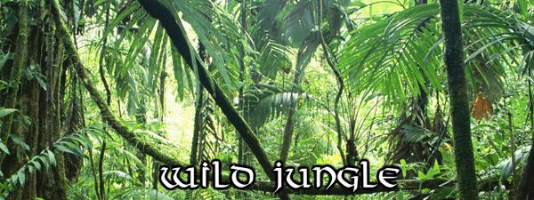 CeR Wild Jungle