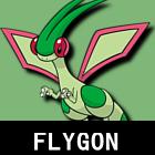 Flygonpoke