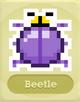 SQ Beetle
