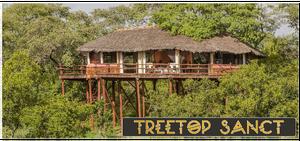 Treetop Sanctuary