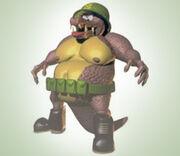 Donkey Kong5