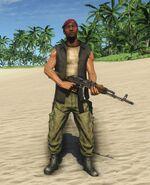 Pirate Defender VIP 2