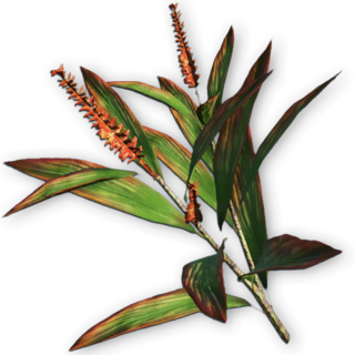 FC3 cutout goodluckplant