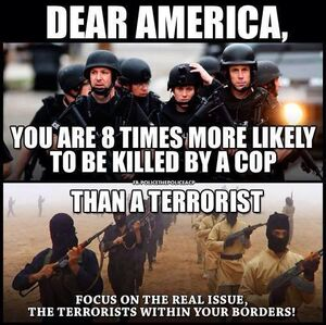 106 more likely cop than terrorist