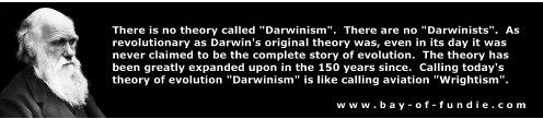 File:DarwinDarwinism.jpg
