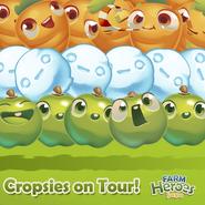 Cropsies on Tour India