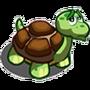 Found Turtle