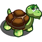 Soubor:Found Turtle.png