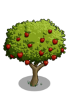 Apple Tree2-icon