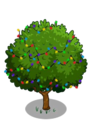 Wild Cashew5-icon