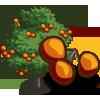 Persimmon Tree-icon