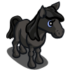 Dales Pony Foal-icon