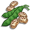 Pinto Bean-icon