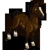 Hackney Horse-icon