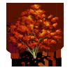 Momiji Tree-icon