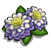 Moon Flower-icon